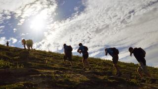 team walking up hillside