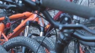 rows of mountain bikes